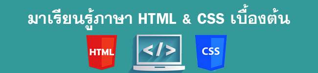 learn html css